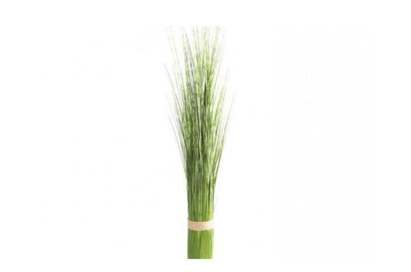 Bamboo Spray - Large