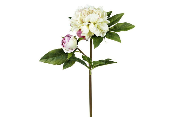 Peony Stem Real Touch - Cream