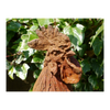 Cast Iron Rustic Cockerel Garden Ornament