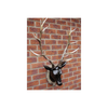 Large Mounted Stag Head - Resin - Black / Beige-Chair-Jaspers of Hinckley Ltd.