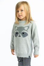 Load image into Gallery viewer, Kawaii Raccoon Knit Sweater