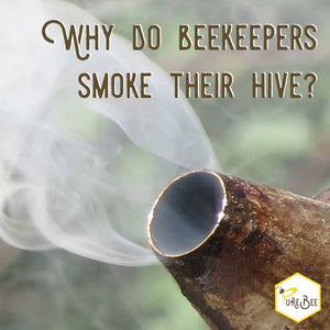 Why Do Beekeepers Smoke Their Hive?