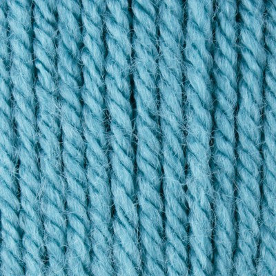 Patons Canadiana - Medium Teal - Yarnia Craft Closet