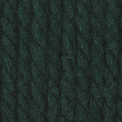 Bernat Softee Chunky - Dark Green - Yarnia Craft Closet
