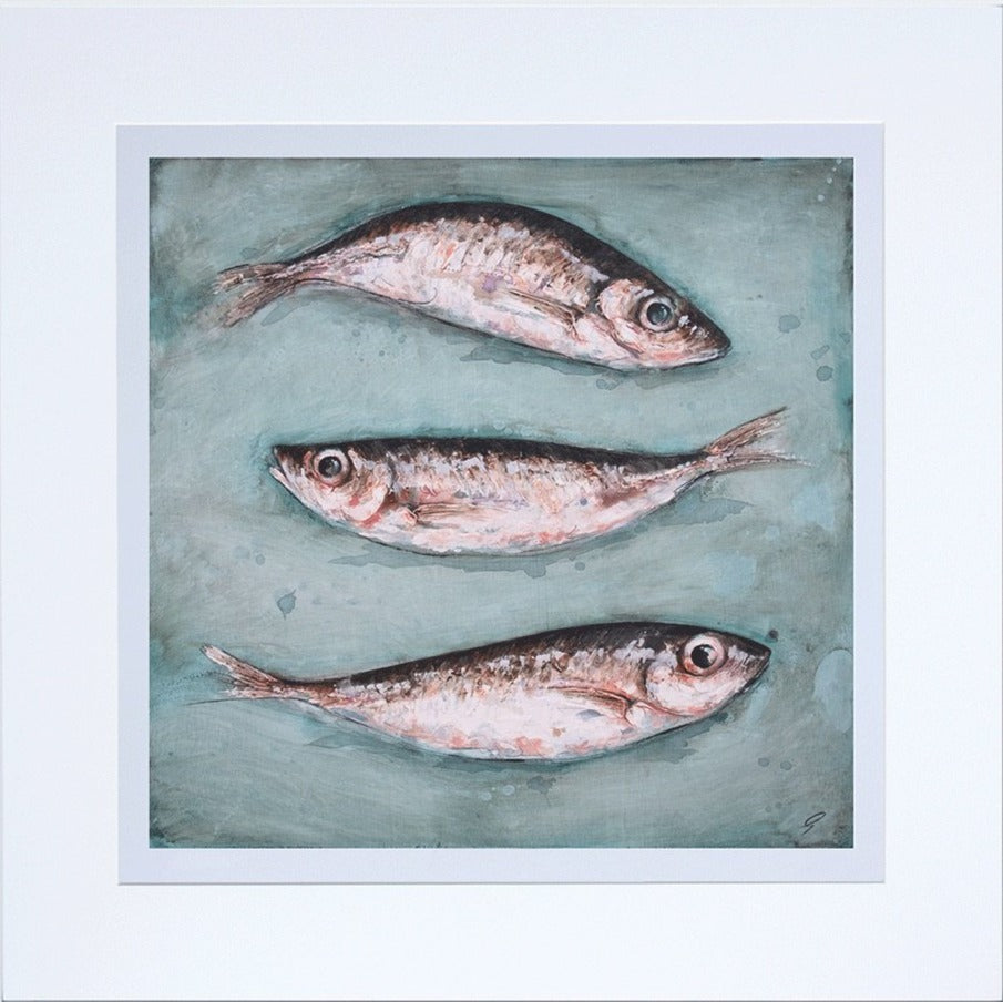 Mackerel Scad by Giles Ward