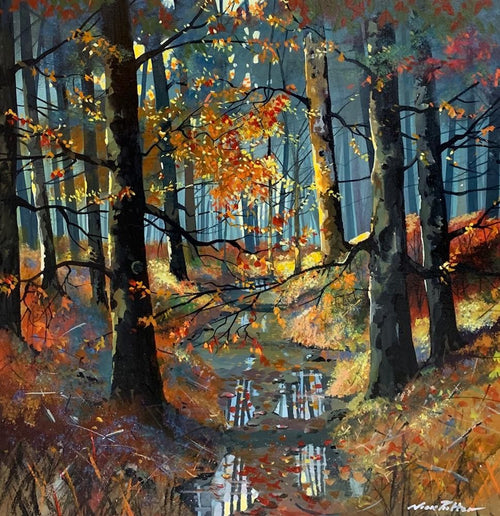 Woodland Light by Nick Potter