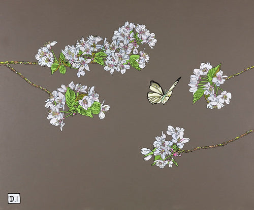 Cherry Blossom With Butterfly by Dylan Izaak