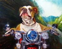 Born to be Wild Dog Art Prints by Lucia Heffernan