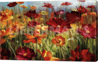 Denhui Nai Cosmos in the Field Gallery Wrapped Giclee Canvas Art Print