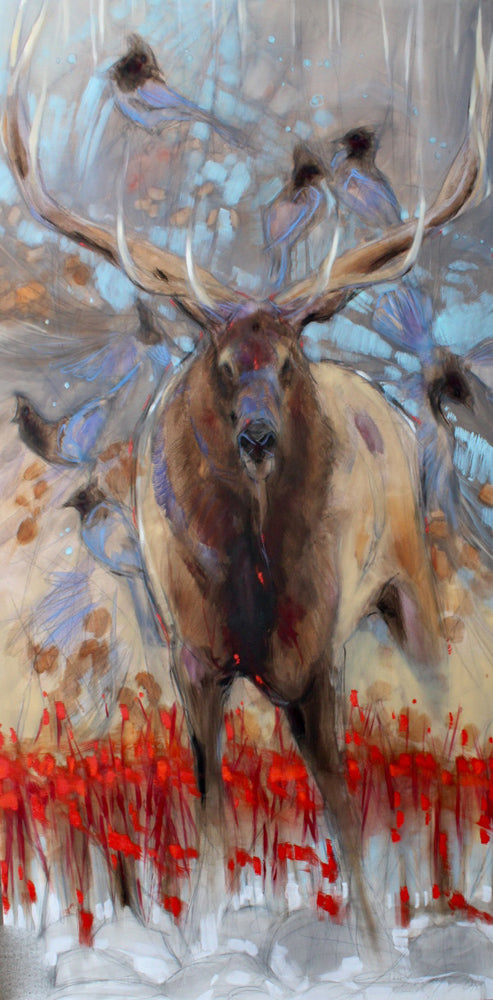 The Stag and the Stellers Jays Art Prints by Amy Lay Artist