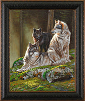 Alpine Alphas – Framed Giclee Canvas by Dallen Lambson