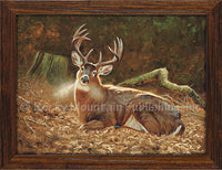 Dallen Lambson - Beauty Rest Framed Canvas Print