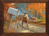 Dallen Lambson - Deer John Framed Canvas art prints