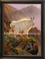 Dallen Lambson - Sunny Delight Framed Canvas Print