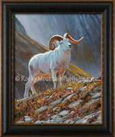 Dallen Lambson - The Great White Framed canvas print