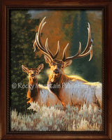 Dallen Lambson - The Royals Framed canvas art prints