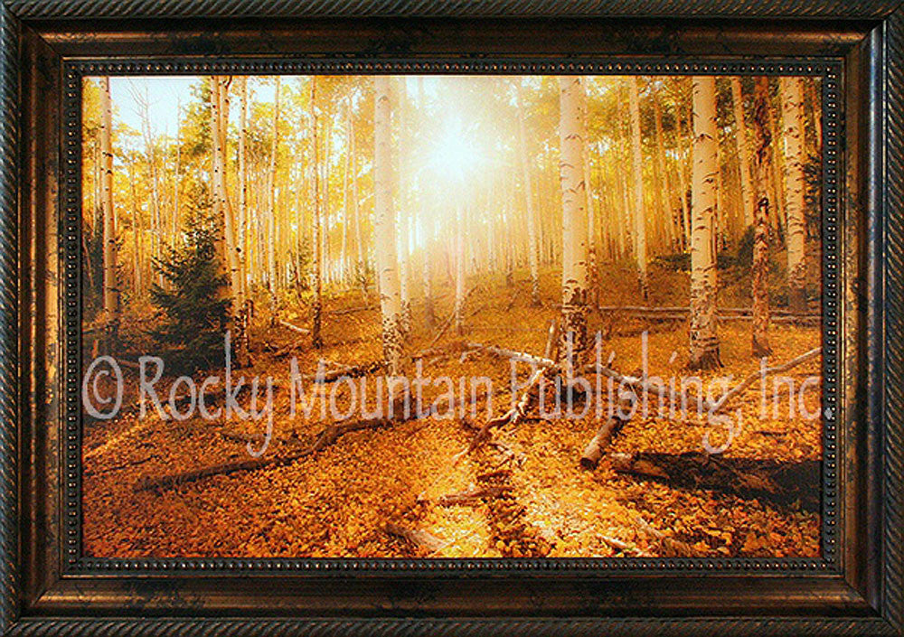 Falls Golden Rays Framed Giclee Canvas by Dan Ballard