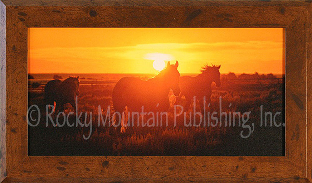In At Sunset Framed Giclee Canvas by Dan Ballard