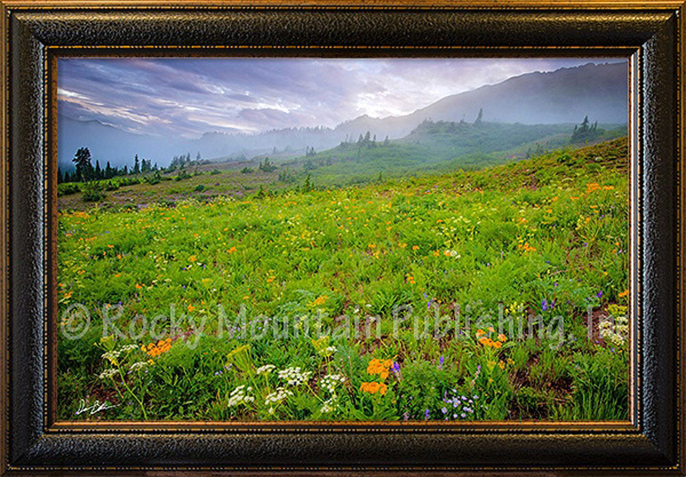 Natures Gift Framed Giclee Canvas by Dan Ballard