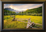 New Morning Framed Giclee Canvas by Dan Ballard