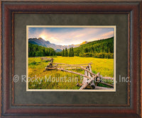 New Morning Framed Print by Dan Ballard