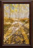 Path Less Traveled Framed Giclee Canvas by Dan Ballard