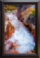 Refresh Framed Giclee Canvas by Dan Ballard