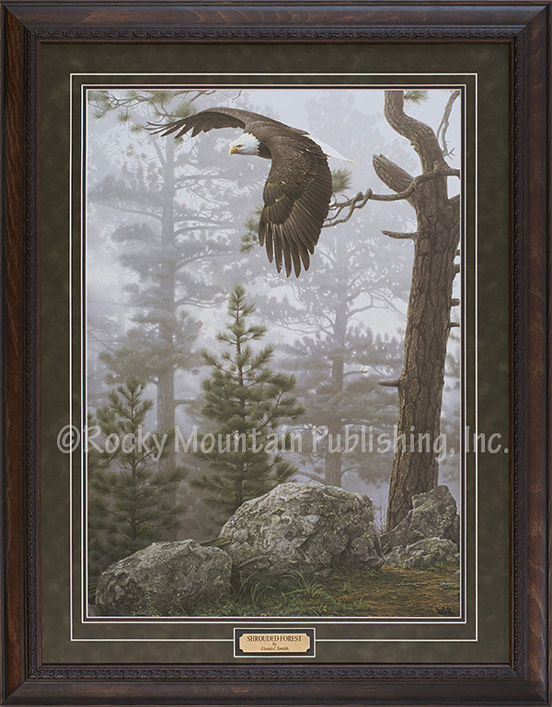 Daniel Smith Shrouded Forest Framed Artwork