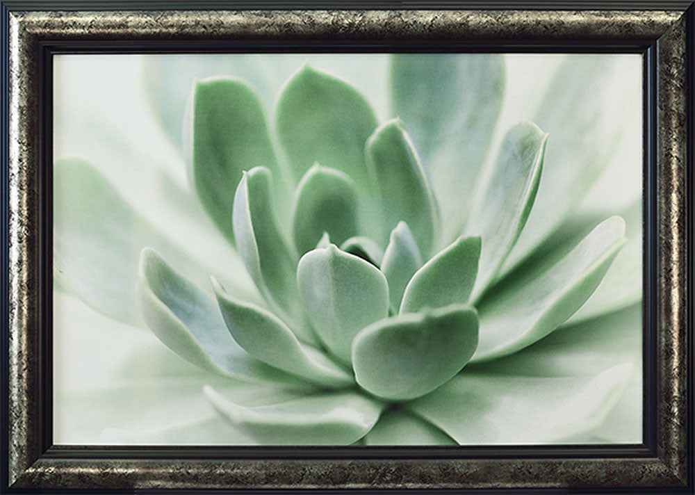 Zen Framed Giclee Canvas by Dina Marie