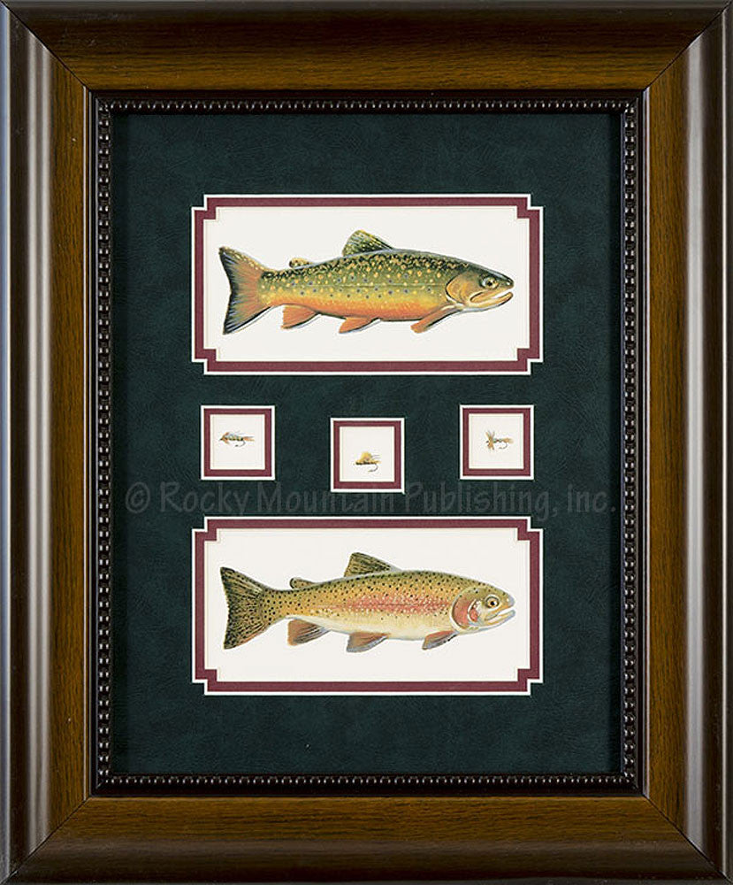 Brook Trout Rainbow and Flies 2 Piece Framed Set by Gary Mansanarez