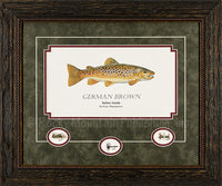 German Brown Framed Print by Gary Mansanarez