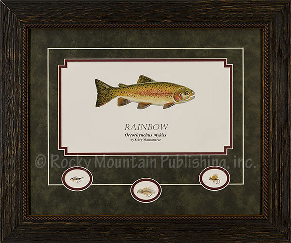 Rainbow Trout Framed Print by Gary Mansanarez