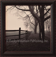 Corner Fence Framed Print by Harold Silverman