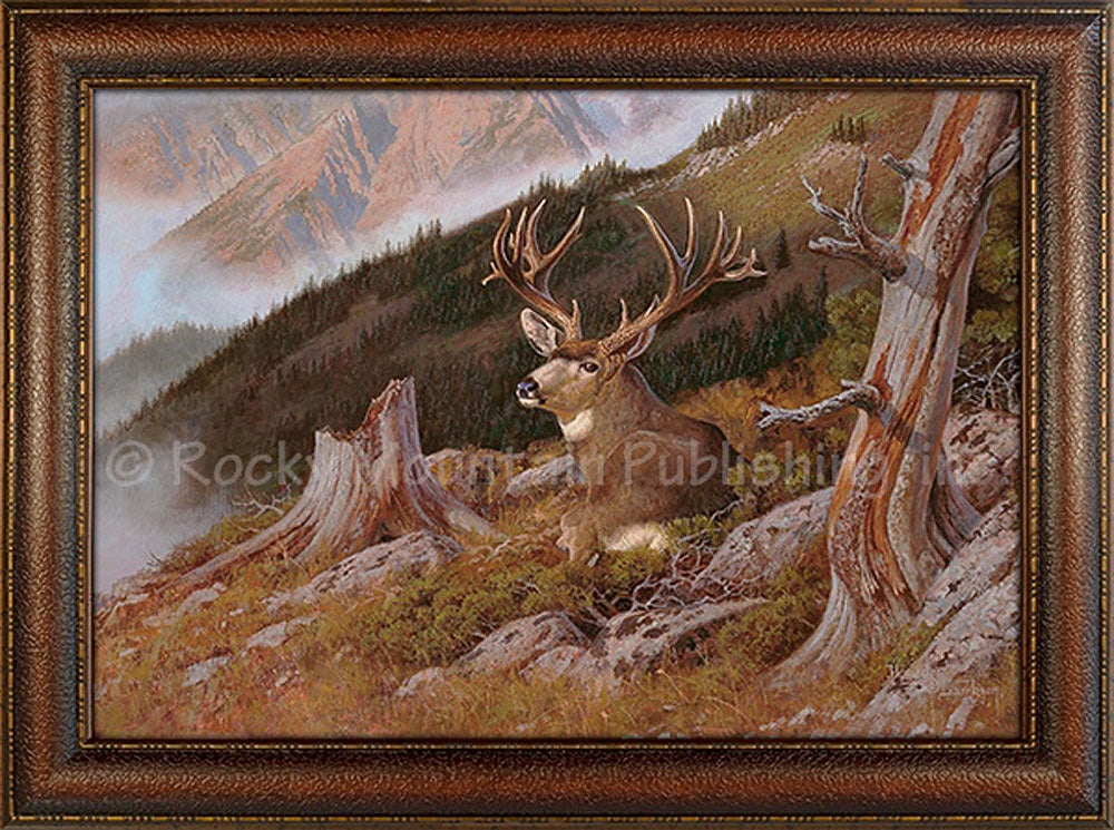 Hayden Lambson - A Bed With a View - Framed Canvas print