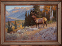 Across the Canyon - Hayden Lambson Framed Canvas Print