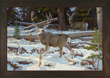 Deep Timber Sanctuary – Framed Giclee Canvas by Hayden Lambson