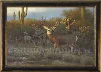 Desert Muleys – Framed Giclee Canvas by Hayden Lambson