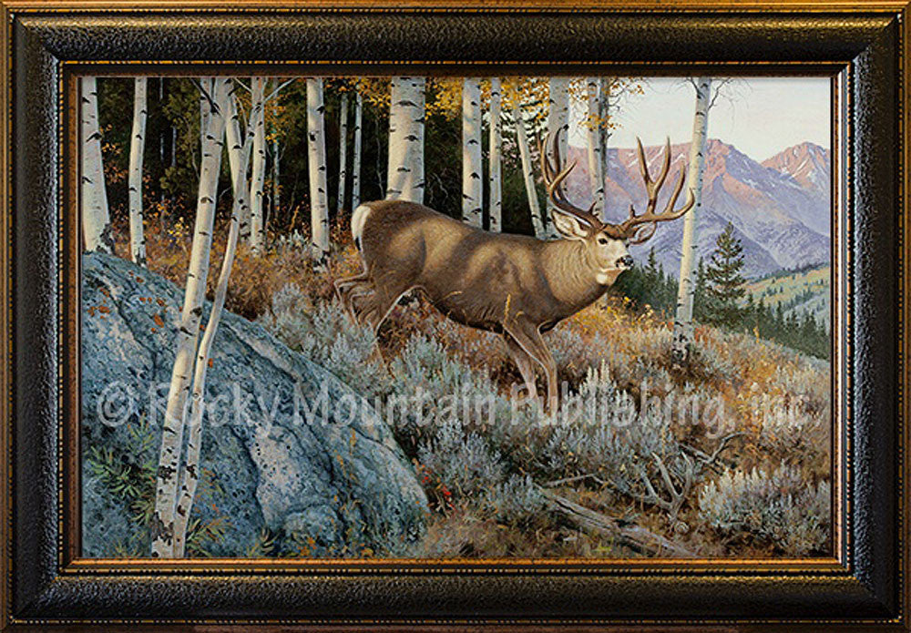 Evening Shadows – Framed Giclee Canvas by Hayden Lambson