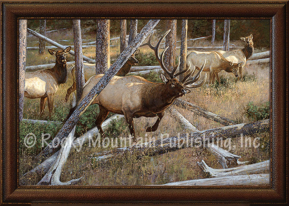 Maneuvering The Pines – Framed Giclee Canvas by Hayden Lambson