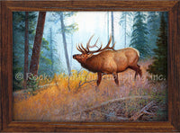 Hayden Lambson - Morning Mist Framed Canvas Print