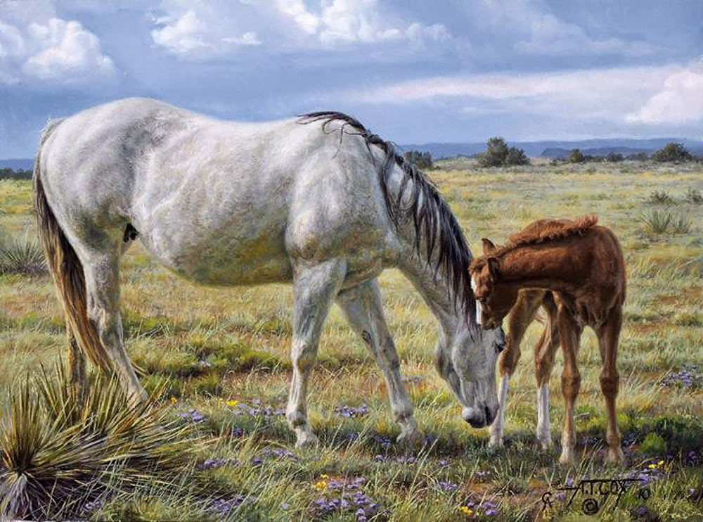 Horse Whisperer Art Prints by Tim Cox
