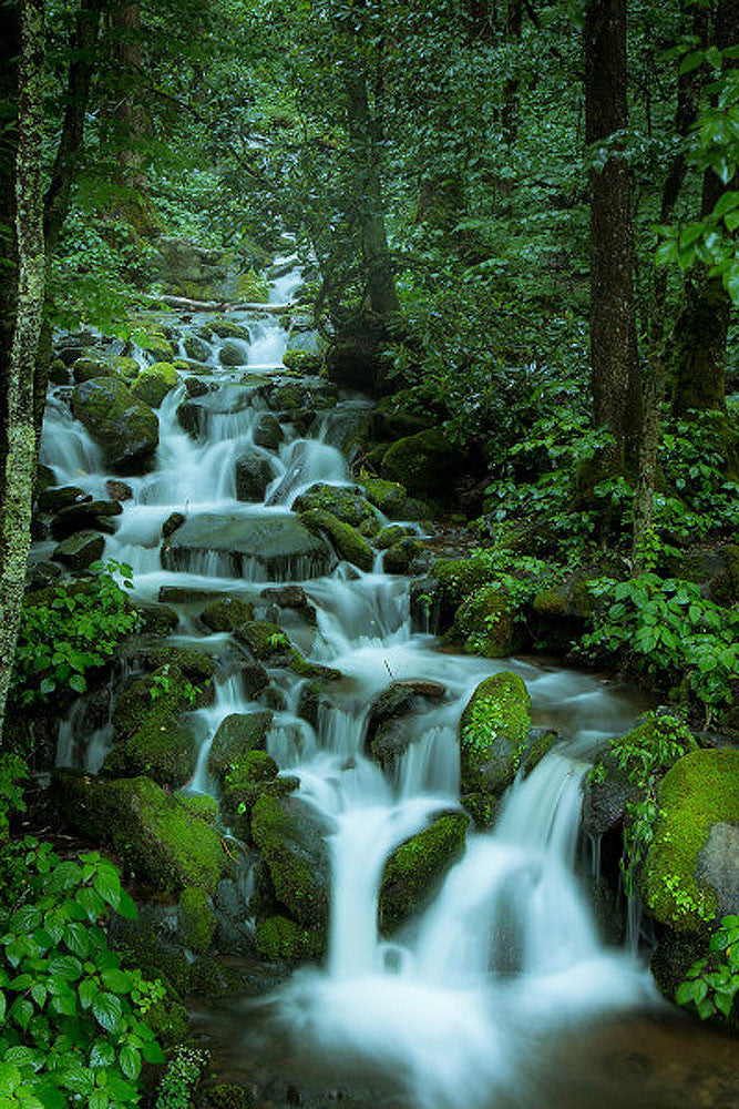 Falling in the Smokies – Art Prints by Jason Clemmons