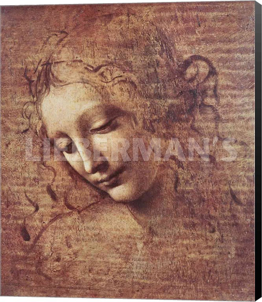 Leonardo Da Vinci Head of a Young Woman Tousled Hair Museum Wrapped Canvas Art Print