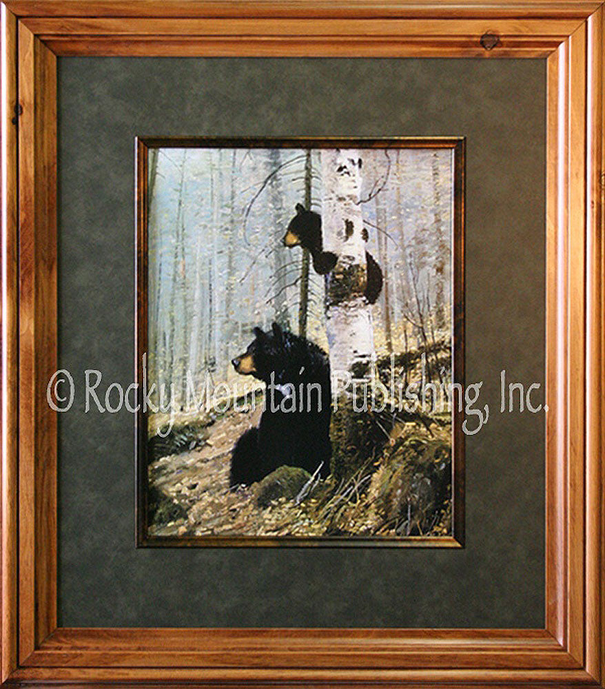 In the Adirondacks Framed Print by Michael Coleman