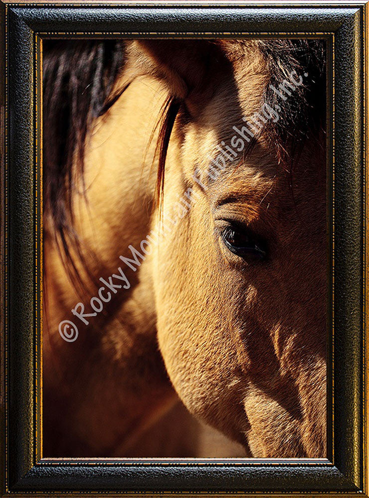 Buckskin I – Framed Giclee Canvas by Mitchell Mansanarez