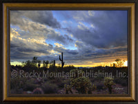 Desert Wonder – Framed Giclee Canvas by Mitchell Mansanarez
