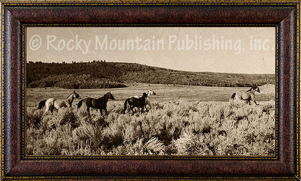 Open Range – Framed Giclee Canvas by Mitchell Mansanarez