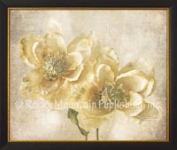 Pair of Magnolias – Framed Giclee Canvas by Mitchell Mansanarez