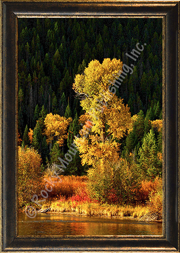River Kaleidoscope – Framed Giclee Canvas by Mitchell Mansanarez