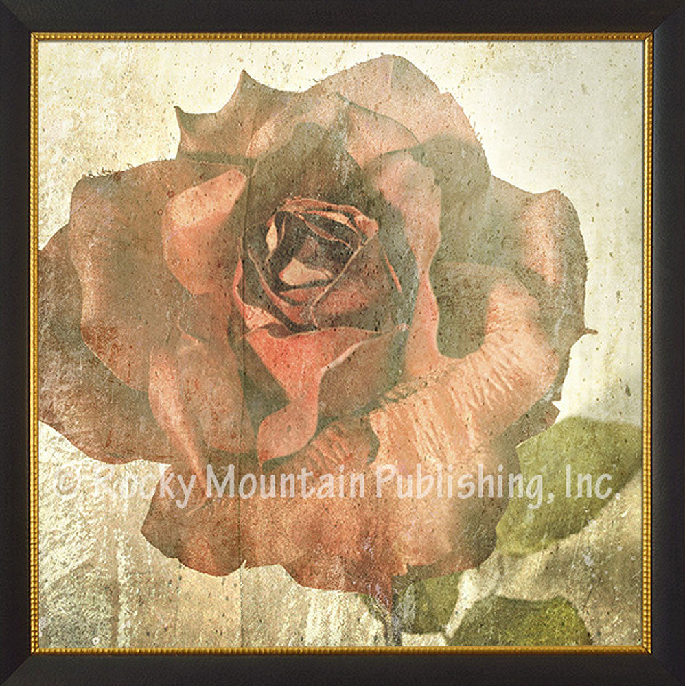 Rose – Framed Giclee Canvas by Mitchell Mansanarez